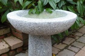 garden-bird-bath